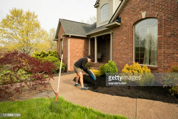 man replacing mulch in front yard - mulch stock pictures, royalty-free photos & images