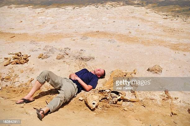 Man lying next to desiccated donkey in Egypt's Siwa Oasis