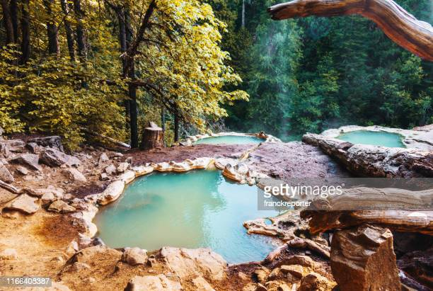 man resting in an hot spring in oregon - hot spring stock pictures, royalty-free photos & images