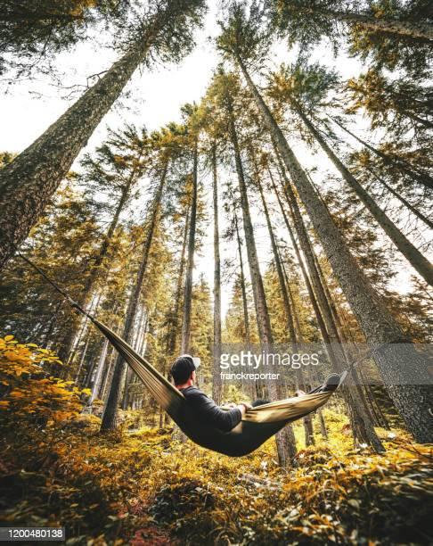 man resting on the hammock - environmental issues imagens e fotografias de stock