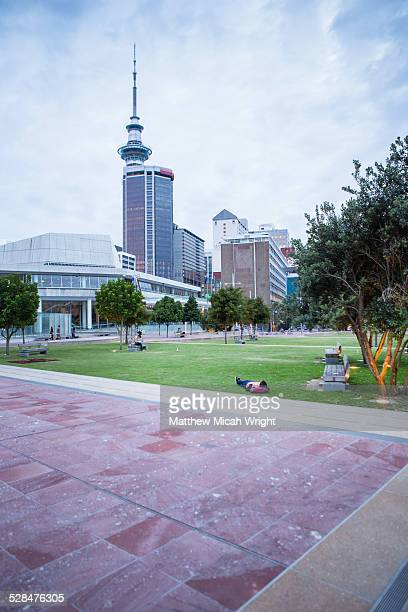 A man rests in a park under Auckland's skytower
