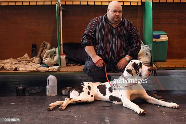 Man rests in the stalls with his Great Dane dog on the second day of the annual Crufts dog show at the National Exhibition Centre on March 11, 2011...