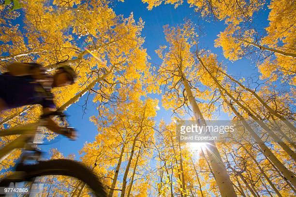 man ride - steamboat springs colorado stock photos and pictures