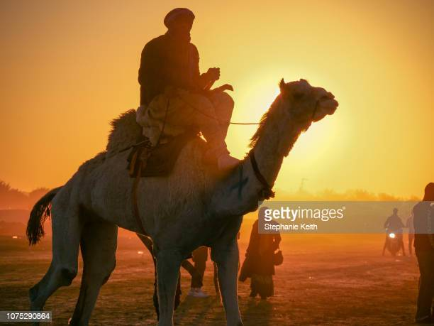 A man rides a camel after the conclusion of the last day of activities at the Sahara Festival on December 23 2018 in Douz Tunisia The Sahara Festival...