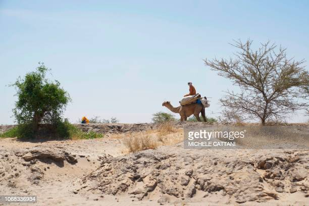 A man rides a camel along the desert in the Southern region of Chad on November 9 2018
