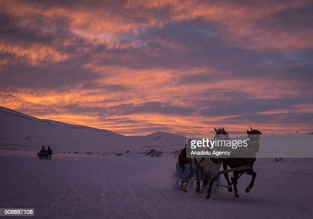 A man rides a cart over the frozen 'Lake Cildir' in Aradahan Province of Turkey on February 05 2016 Lake Cildir which has freshwater is located at...