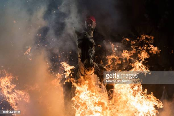 Man rides a horse through a bonfire during the traditional ritual in honor of San Antonio Abad , patron saint of domestic animals. This tradition...