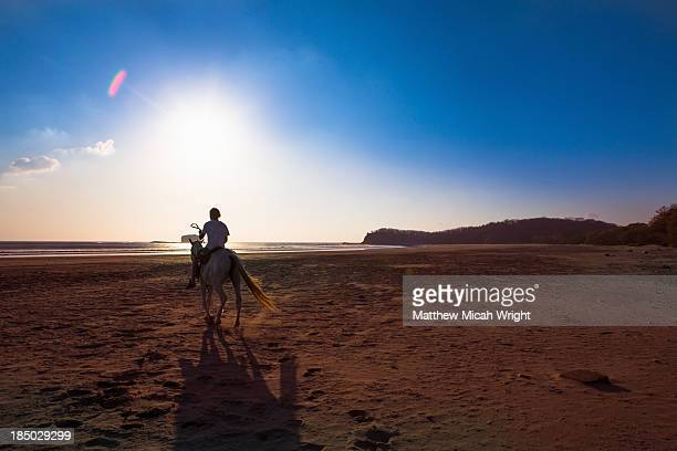 A man rides a hose along the beach