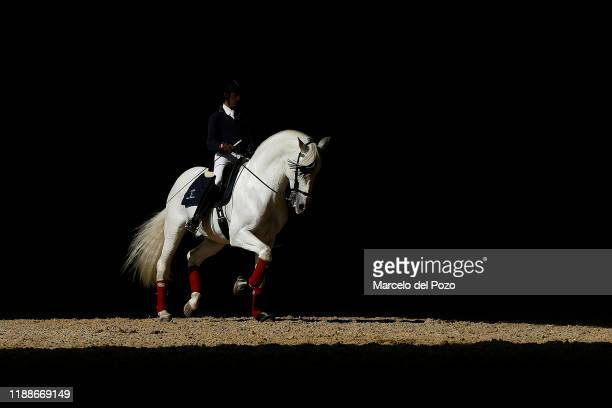 A man rides a purebred Spanish horse during the Sicab International Horse Fair on November 19 2019 in Seville Spain Sicab is dedicated exclusively to...