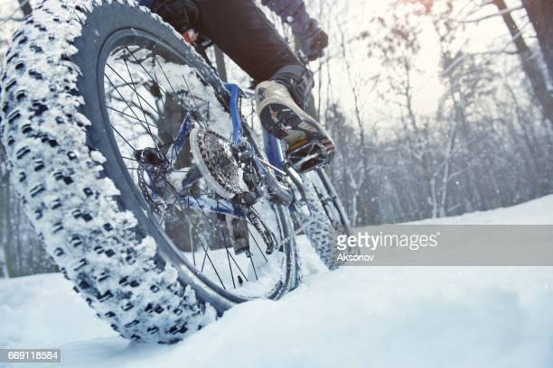 人はフォレスト内脂肪の自転車に乗る