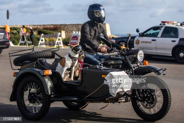 A man rides his motorcycle with dogs in the sidecar near the ocean on April 18 in Rancho Palos Verdes California