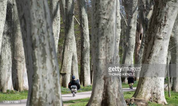Man rides his recumbent bike through an alley in a park in Stuttgart, southern Germany, on March 31 as confinement measures are implemented to avoid...