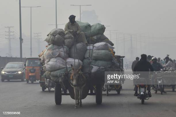 Man rides on his loaded donkey cart on a street amid heavy smoggy conditions in Lahore on November 10, 2020.
