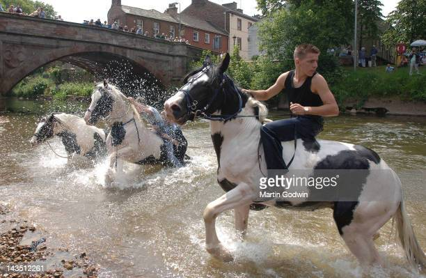 Man riding a black and white horse bareback in a river with two other horses with splashing water whilst people watch from the bridge at the Appleby...