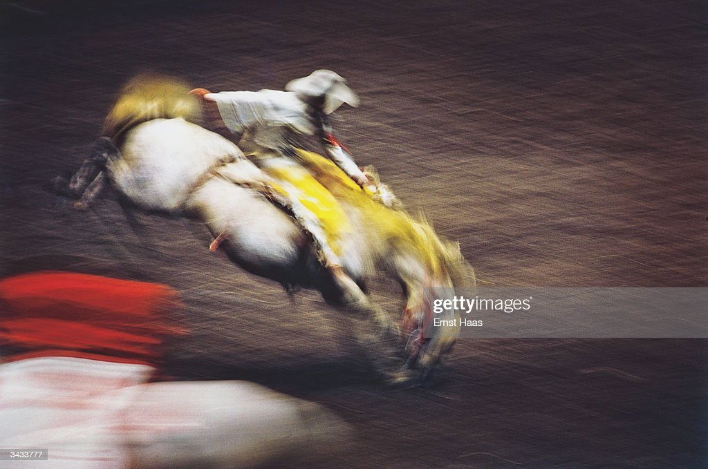 A man riding a bucking bronco at a rodeo held in Madison Square gardens. Colour photography book