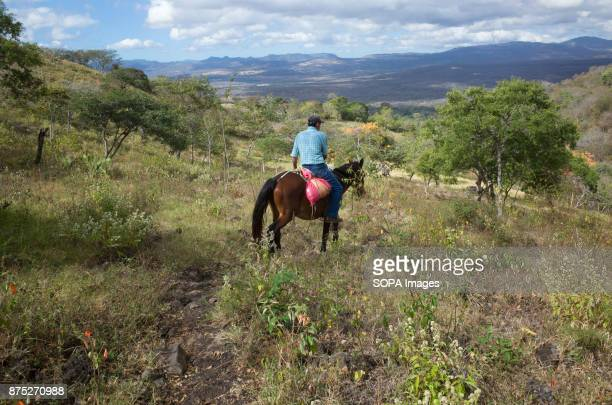 A man riding a horse in the valley of El Coyolito Although Nicaragua struggled to recover from the devastation caused by the civil war of the 1980s...
