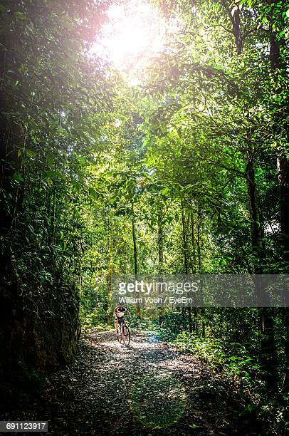 man riding bicycle amidst trees on walkway at forest - bicycle trail outdoor sports stock photos and pictures