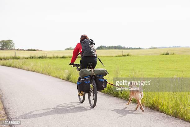 man riding bicycle with dog - stefanie grewel stock-fotos und bilder