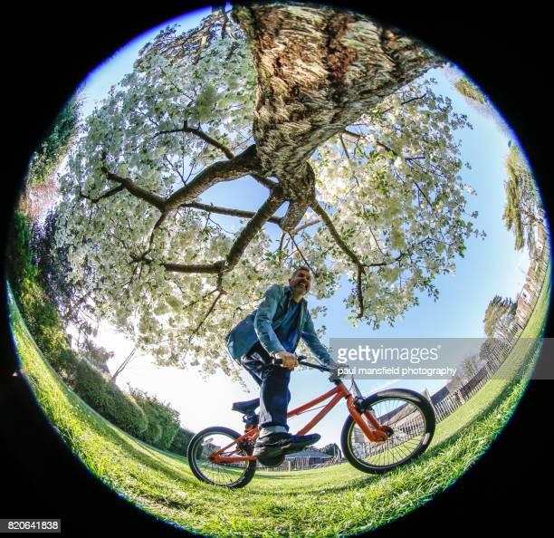 man riding bmx bike under blossom tree - fish eye foto e immagini stock