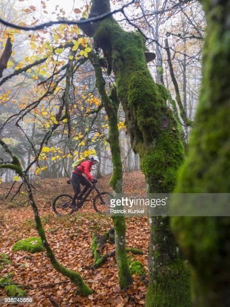 Man riding electric mountain bike on single trail, Vosges, France