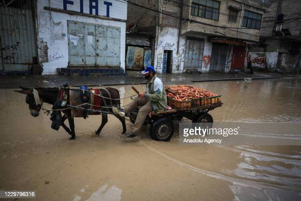 A man riding his donkey cart makes his way through a flooded street caused by rainfall in Gaza City Gaza on November 26 2020