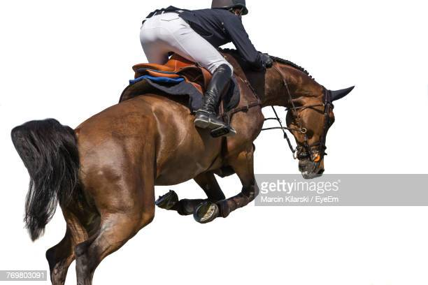 Man Riding Horse Against White Background