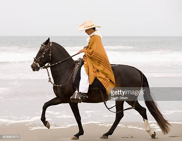 man riding horse on beach - hugh sitton photos et images de collection