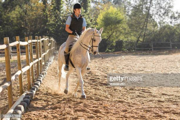 man riding horse on riding ring - equestrian event stock pictures, royalty-free photos & images