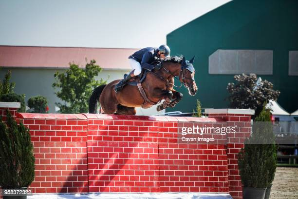 man riding horse over wall at show - hurdling horse racing stock pictures, royalty-free photos & images