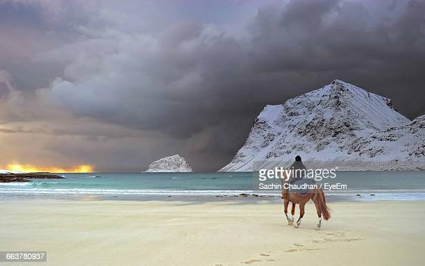 Man Riding Horse With Sea And Snow Covered Cliffs In Background