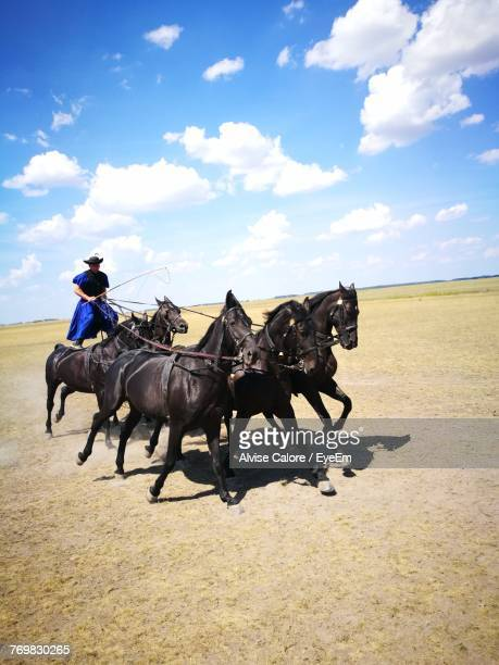 Man Riding Horses On Field Against Sky