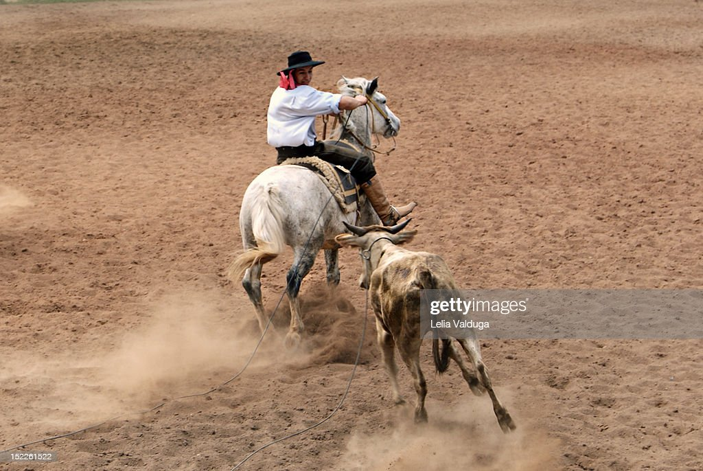 Man riding on horse : Stock Photo