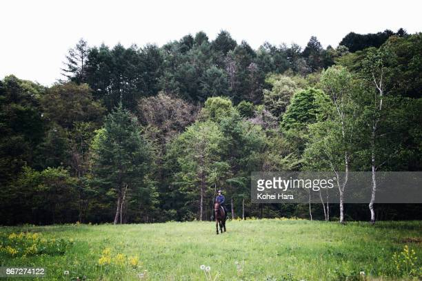 Man riding on the horse in the pastureland in the rain