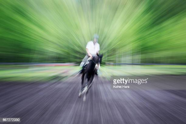Man riding on the horse in the riding ground