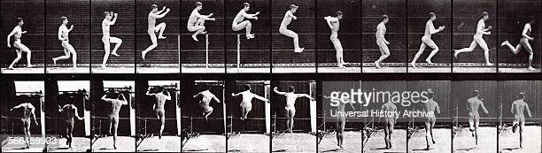 A sequence photograph by Eadweard J Muybridge 1887 Sequence of photographs to show incremental movement
