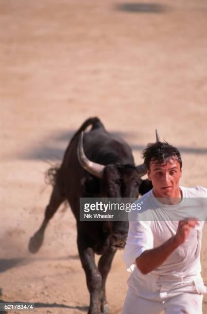 Man Running from Charging Bull