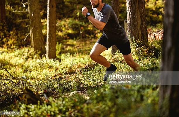 man running in forest, keimiotunturi, lapland, finland - クロスカントリー競技 ストックフォトと画像