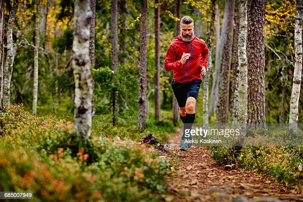 man running in forest, kesankitunturi, lapland, finland - cross country running stock pictures, royalty-free photos & images