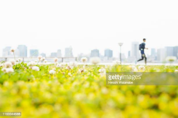 man running in park with a view of the city - city life stock pictures, royalty-free photos & images