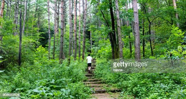 Mann läuft auf den Stufen des Waldes