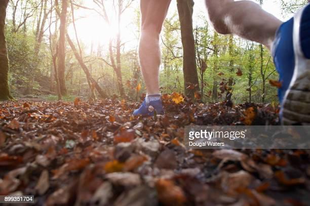 man running through autumnal woodland. - 55 59 jahre stock-fotos und bilder