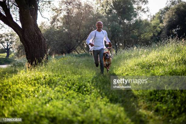 man running with dog in nature - canine stock pictures, royalty-free photos & images