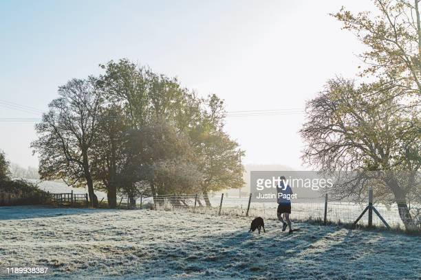 man running with pet dog - running stock pictures, royalty-free photos & images