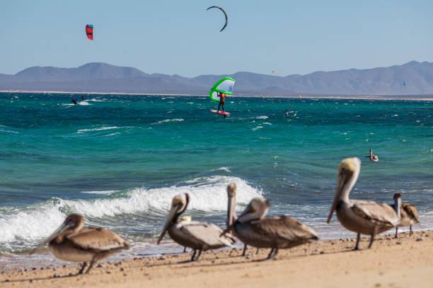 MEX: Kitesurf Practice at Playa La Ventana Amid Coronavirus Pandemic