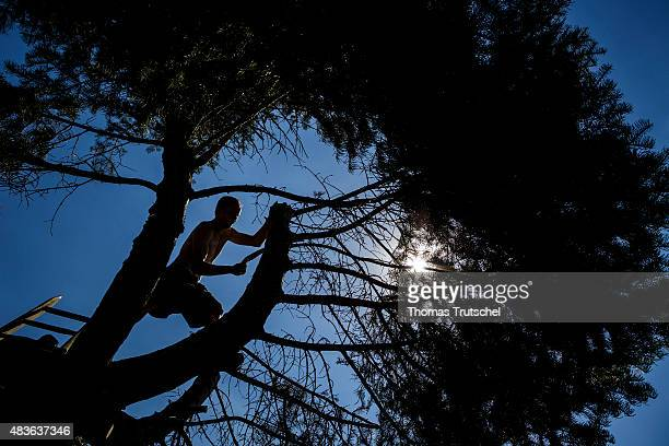 Man saw some boughs from a tree in his garden on August 02, 2015 in Berlin, Germany.