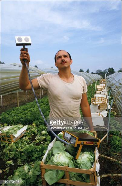 A man scans his produce for radioactivity during Radioactivity control after the Chernobyl accident in May 1986 in StrasbourgFrance