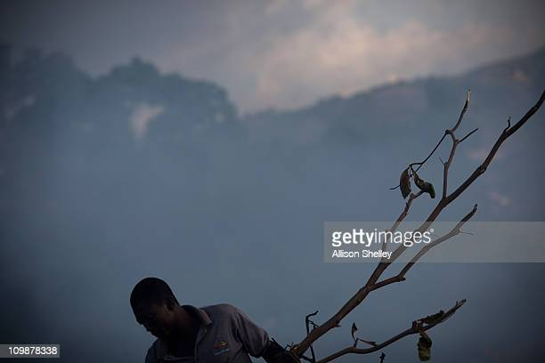 A man scavenges for materials that he can resell at an unofficial dump in front of a community called Village Alpha March 8 2011 in PortauPrince...