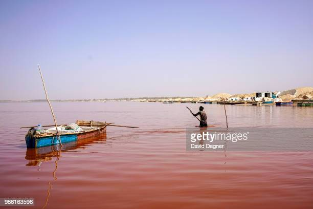Man scoops buckets of salt off the floor of Lac Rose on the edge of Dakar, Senegal. Lac Rose is a saline lake that gets its color from a special type...