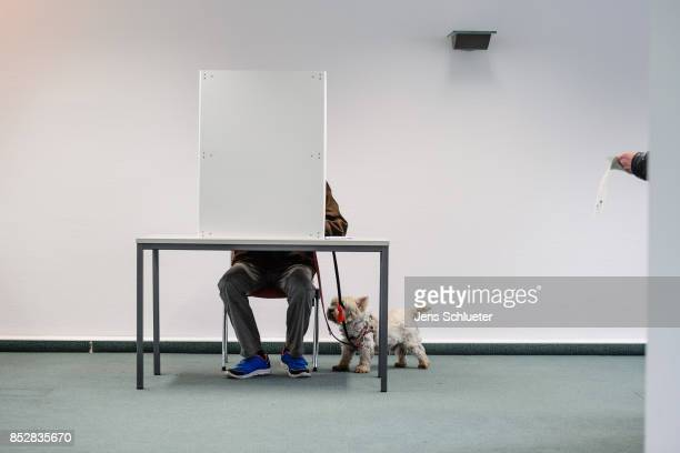 A man seated behind voting booths as they fill in their election ballots at a polling station during German federal elections on September 24 2017 in...