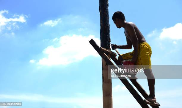 A man seen getting the pole ready for the participants to climb before the event Participants climb greased poles to collect prizes during a Panjat...